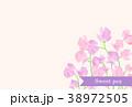 スイートピー 38972505