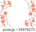 カーネーション 花 フレームのイラスト 38976272