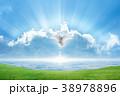 White dove Holy spirit bird flies in skies 38978896