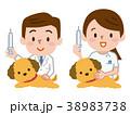 獣医師 注射 ナースのイラスト 38983738