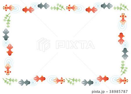 金魚のフレーム 38985787