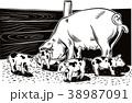 ぶた ブタ 豚のイラスト 38987091