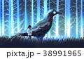 子供 少女 鳥のイラスト 38991965