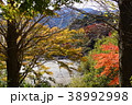 宮川峡谷の紅葉 38992998