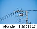 電柱 電線 電信柱の写真 38993613