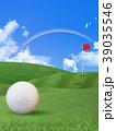 ゴルフ ゴルフボール 芝のイラスト 39035546