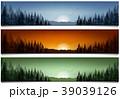 森林 林 森のイラスト 39039126