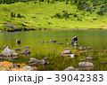 秋の鎌沼 39042383