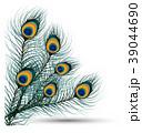 鳥 デザイン 柄のイラスト 39044690