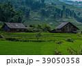 ヴェトナムの農村風景 39050358