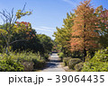 日岡山公園 秋 紅葉の写真 39064435