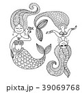 マーメイド マーメード 人魚のイラスト 39069768