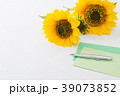 手紙 39073852