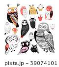 鳥 ふくろう フクロウのイラスト 39074101