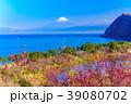 花桃咲く西伊豆井田・海越しの富士山 39080702