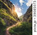 山 緑 滝の写真 39085073