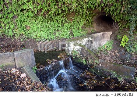 横浜市瀬上沢の江戸時代史跡、横堰と貝化石露頭 39093582