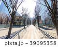 都市風景 さいたま新都心 けやき広場(冬) 39095358