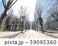 都市風景 さいたま新都心 けやき広場(冬) 39095360