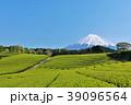 富士山 初夏 茶畑の写真 39096564