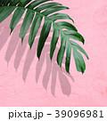 背景-植物-ピンク 39096981