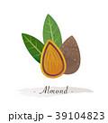 アーモンド ハタンキョウ 木の実のイラスト 39104823