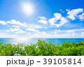 沖縄 南国 青空の写真 39105814