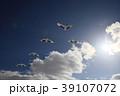 丹頂 鶴 鳥の写真 39107072