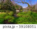 柿田川 富士山 川の写真 39108051