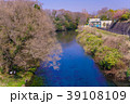 柿田川湧水 柿田川 川の写真 39108109