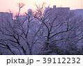 雪景色の高知市 39112232