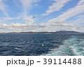 鴎 鳥 海鳥の写真 39114488