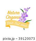 紫色 らん ランのイラスト 39120073