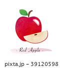 りんご アップル リンゴのイラスト 39120598