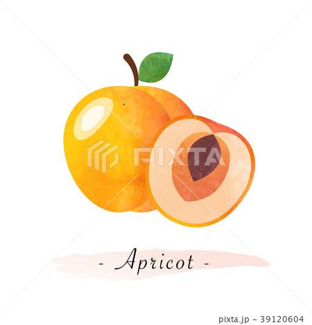 Colorful watercolor texture vector healthy fruit 39120604