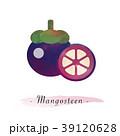 まんごすちん マンゴスチン マンゴスティンのイラスト 39120628