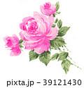 花 薔薇 水彩のイラスト 39121430