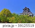犬山城 城 天守閣の写真 39125519