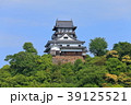 犬山城 城 天守閣の写真 39125521