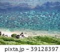 海 海岸 サンゴ礁の写真 39128397