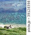 海 海岸 サンゴ礁の写真 39128398