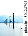 江川海岸 電柱 海の写真 39128795