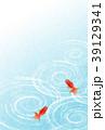 金魚 波紋 夏のイラスト 39129341