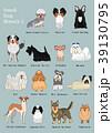 小型犬の種類1 手描き 39130795