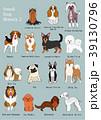 小型犬の種類2 手描き 39130796