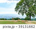 若草山 鹿 動物の写真 39131662