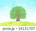 木 大木 小鳥のイラスト 39131707