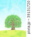 木 大木 小鳥のイラスト 39131720