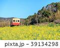 春 小湊鉄道 菜の花の写真 39134298