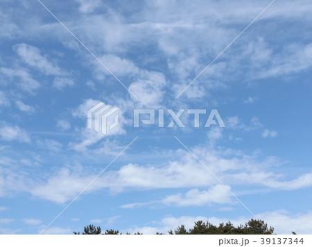 春の稲毛海浜公園の青空と白い雲 39137344